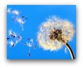Mercato dell'usato: vento di cambiamento